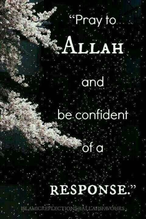 Always be confident that Allah will reply to you!   #TrustInAllah #Dua #Islam