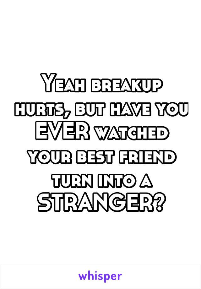 Yeah breakup hurts, but have you EVER watched your best friend turn into a STRAN… – Words to Live by