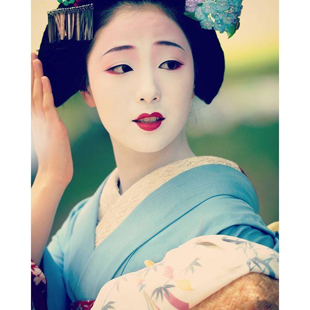 芸妓さんと舞妓さんのブログ (The most popular maiko of Gion Kobu - Mamefuji san...)