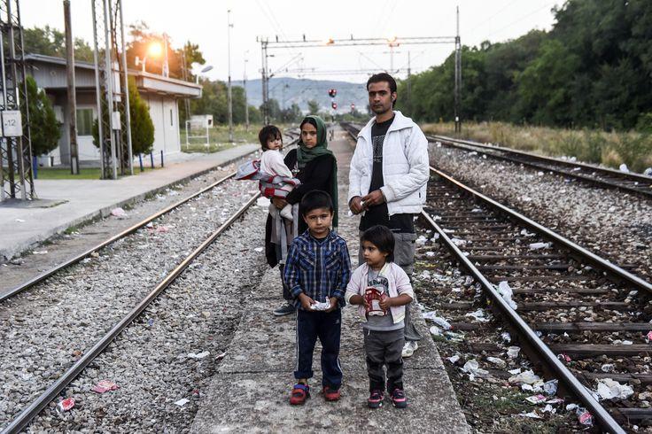 Afgán menekült család Macedóniában Presevo vasútállomásán. Friss hírek a menekülthullámról az Origon!  Fotó: Armend Nimani - AFP #menekült #migráns #macedonia