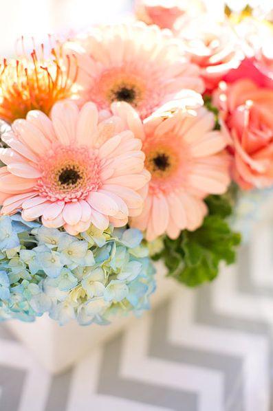 Three of my favorite flowers ~ roses, gerber daises and hydrangeas