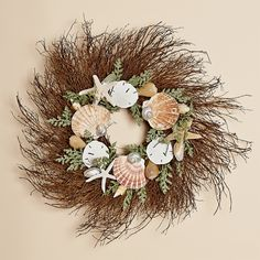 24 Inch Twig Wreath with natural Irish Flat Shells, Sand Dollars and Starfish