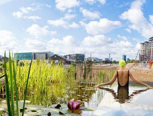 Zwemfanaten in Londen kunnen straks hun hart ophalen. Midden in het centrum van de stad hebben Ooze Architects (Rotterdam) en Marjetica Potrč een 'natuurlijk' zwembad gepland. Het bad is vrij van chemicaliën, en wordt gefilterd en schoon gehouden door middel van natuurlijke processen. Met een lengte van 40 meter is het bad toegankelijk voor ruim 40 zwemfanaten. Het ontwerp is een interessante combinatie tussen stedelijkheid en wilde natuur.
