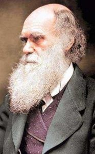 Charles Robert Darwin    http://whatisthewik.com/quotes_of/charles-robert-darwin/