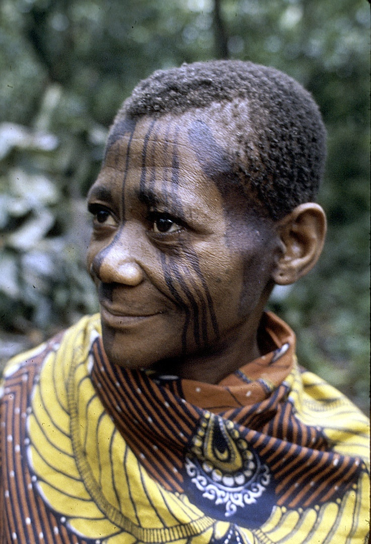 mbuti pygmies The batwa pygmies of uganda, for example, are genetically quite distinct from the mbuti pygmies who live a mere 500 kilometres (310 miles) away in the dr congo the researchers further found that the pygmy genome could contain as much as 50 percent dna inherited from people of bantu origin.
