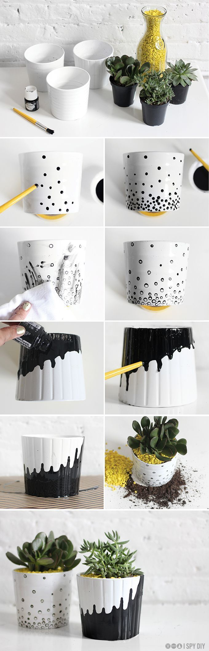 DIY succulent planters modern black and white with gold accents