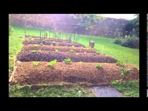 Permaculture : création et évolution d'une butte autofertile - YouTube