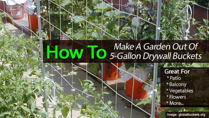 How to make a garden out of 5 gallon drywall buckets for Gardening 5 gallon bucket