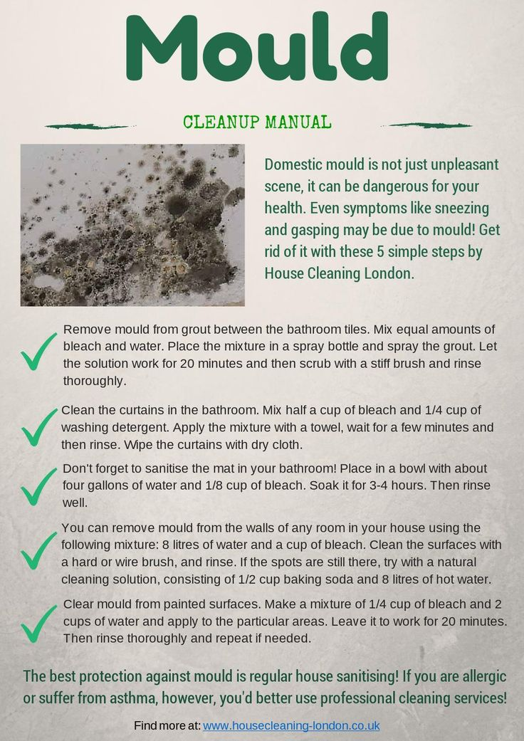Mould cleanup – manual for you