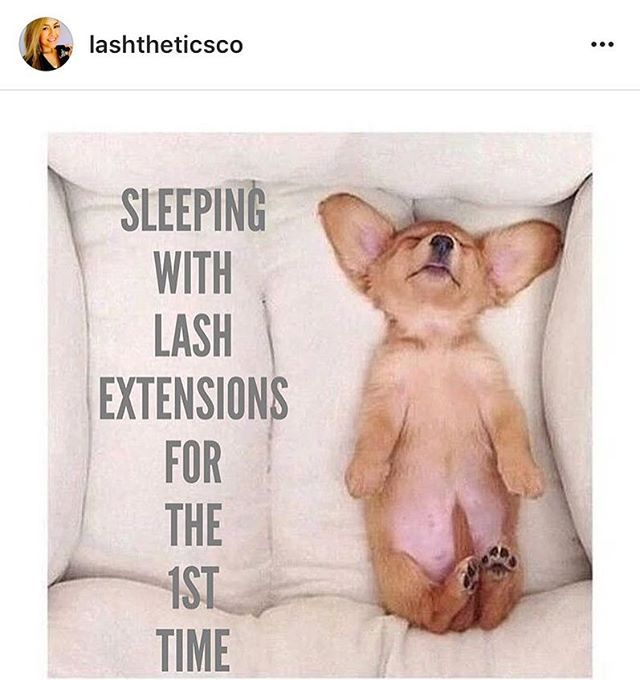 Had to repost this Thank you for sharing @lashtheticsco.  #sotrue #lashextensions #prolashproducts #eyelashextensions #lovelashing #lashtechs #lashartists
