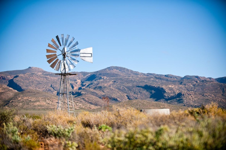 #Windmill #Karoo