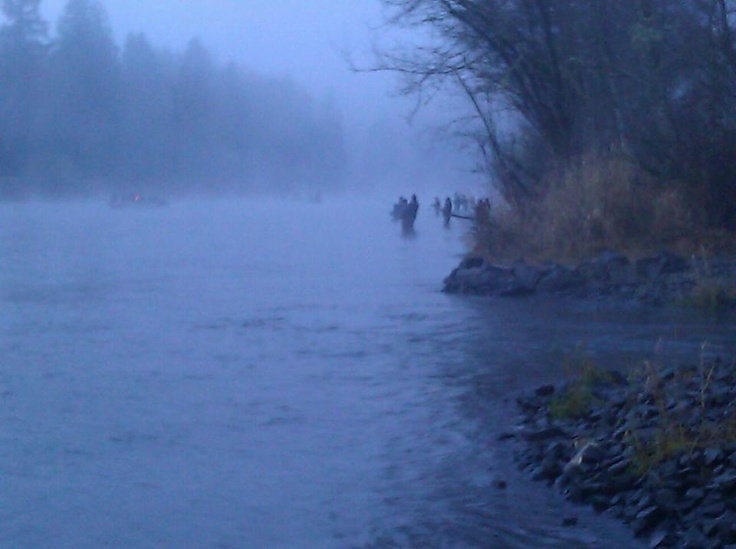 Cowlitz river by blue creek fishing in the great for Cowlitz river fishing