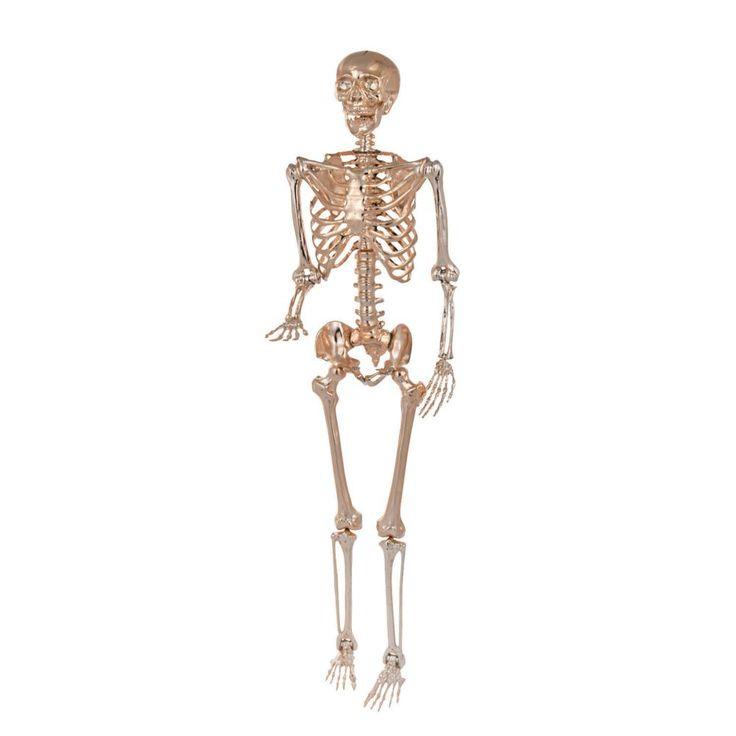 Gold Posable Skeleton