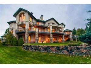 Lone Tree Homes For Sale - Denver Elite Home Team