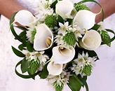 Wedding Flowers. Don't know if you have seen this website, it's Tulsa and seems to be fairly good prices.