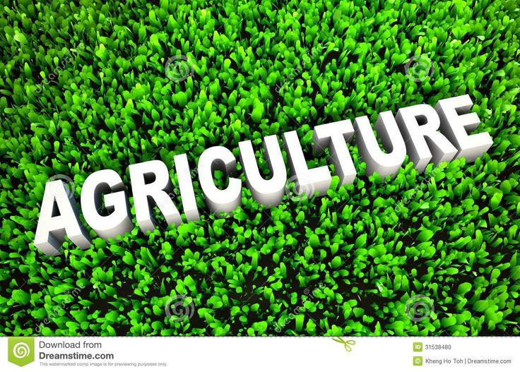 Image result for download agriculture pictures