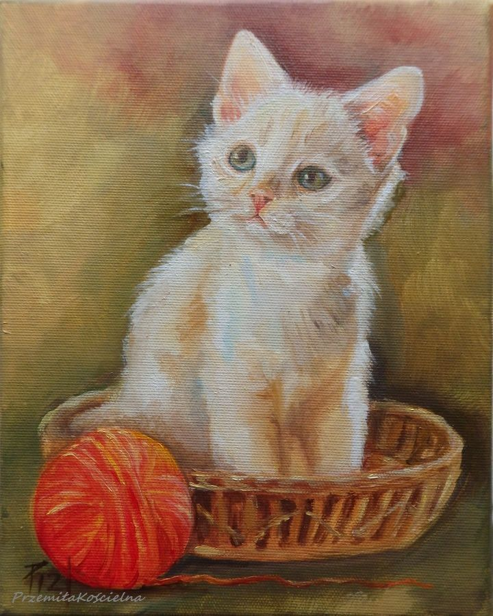 White Cat original oil painting. Framed Art #cat #Art #oilpainting #framed #petportraits #CanisArtStudio