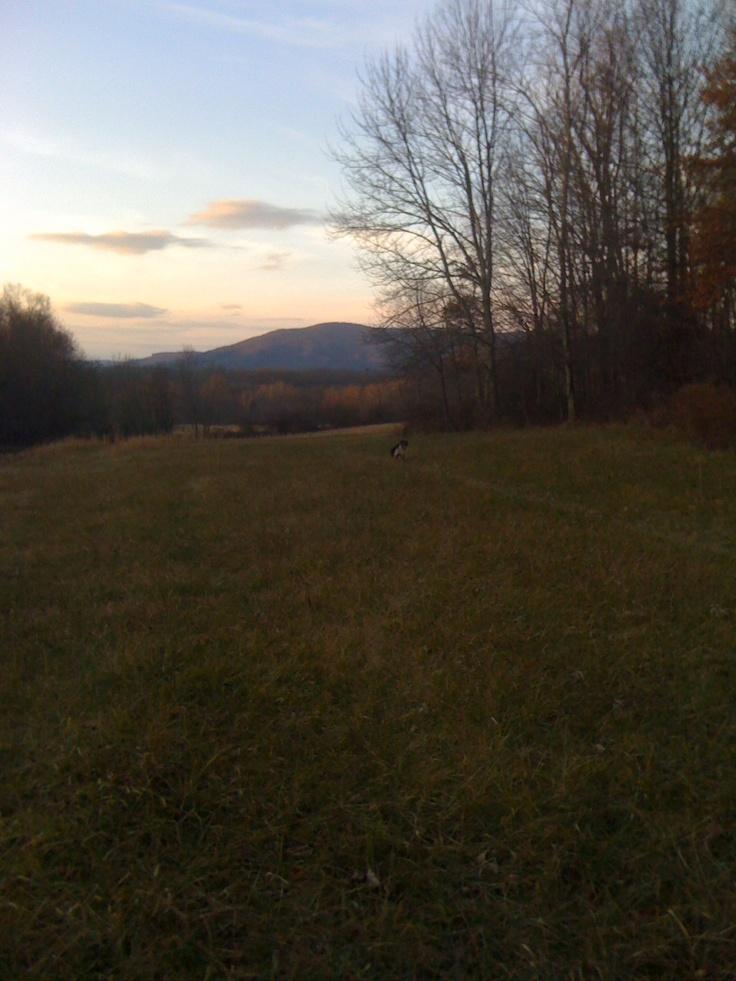 Little Sewell Mountain, Greenbrier Co., W.Va.