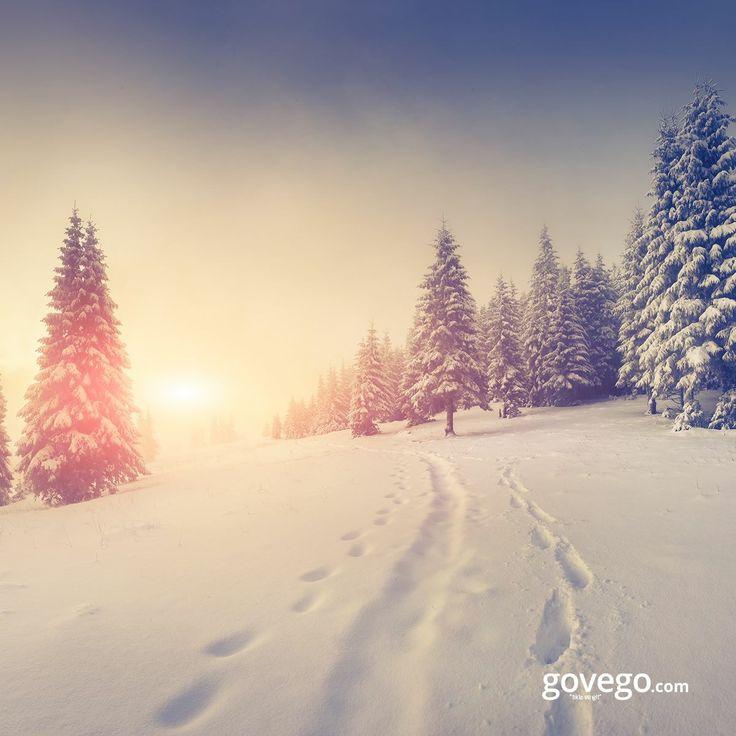 Evet soğuk, kat kat giyiniliyor belki ama kim sevmez ki bu bembeyaz güzelliği ☺️ ☔️ ☕ ---------------------------- govego.com #doğa #naturel #yeşil #green #life #lifeisgood #seyahatetmek #seyahat #yolculuk #gezi #view #manzara #gününkaresi #huzur #an  #anatolia #turkey #travel #turizm #türkiye #turkey #instagram #instagood #instaphoto #bestoftheday #photo #huzur  #govego #smile #travel