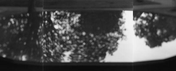 TheMammoth'sReflex ANTEPRIMA. I bianchi e neri orientali di Hiroshi Sugimoto in mostra a Modena - TheMammoth'sReflex