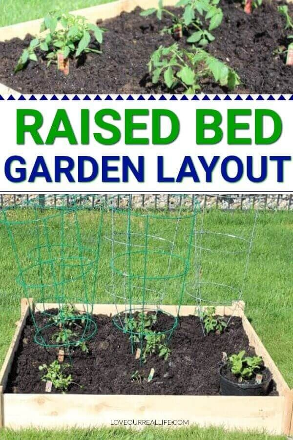 Tips For Growing Tomatoes And Other Veggies In A Small Raised Bed