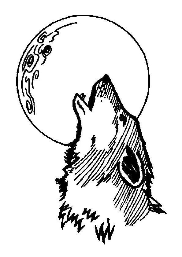 82 best Dessins de Loups à colorier images on Pinterest ...