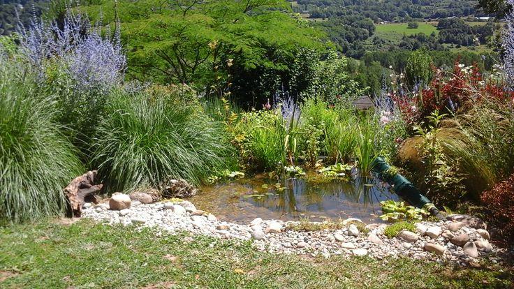 80 best étang images on Pinterest Gardens, Backyard ponds and