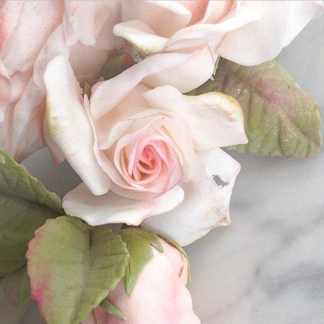 Maggie Austin   May 2015   sugar rose #maggieaustincake