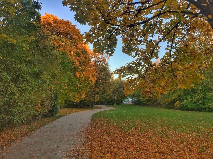 Bavarian #autumn.   #muenchen #instamunich #munich #münchen #bavaria #bayern