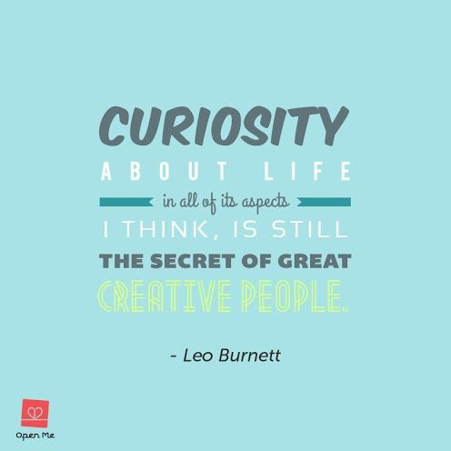 Curiosity Open Me Me Quotes Words Quotes