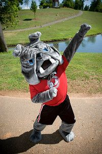 Mack the Bulldog, Gardner-Webb Runnin' Bulldogs mascot