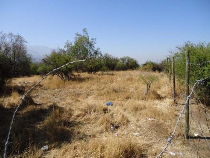 Sitio en La Dehesa Central Informe de Engel & Völkers | T-1410809 - ( Chile, Región Metropolitana de Santiago, Lo Barnechea, El Huinganal )