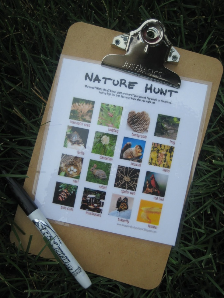Movement Activity: A nature scavenger hunt game. This could be a really fun activity that could range in difficulty depending on the age of the students.