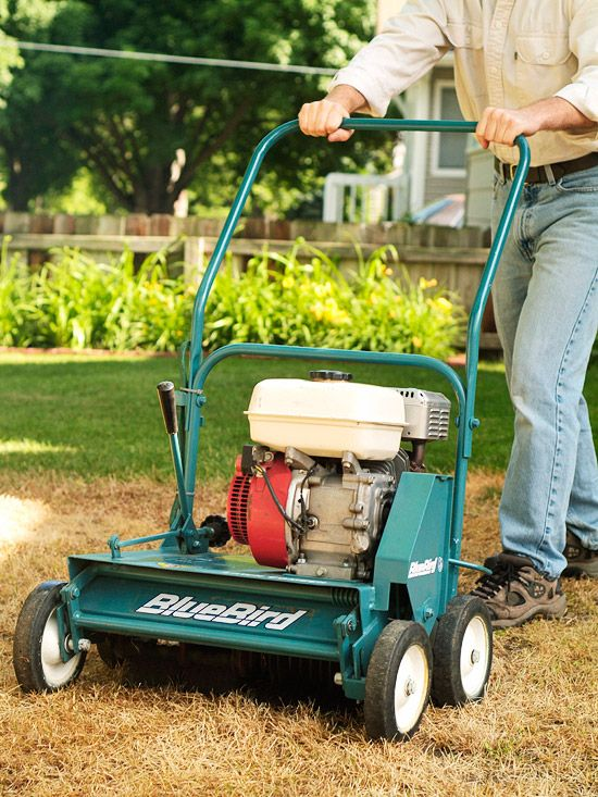 Purchasing a power rake is a great investment when updating your lawn. More lawn repair tips here: http://www.bhg.com/gardening/yard/lawn-care/how-to-fix-lawn/?socsrc=bhgpin060914rakerakerepeat&page=4