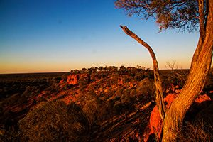 Quilpie, on the edge of the outback in southern Queensland, is a top town. But are there really seven magnificent things at Quilpie? We think so. 1 The boulder opal found in the area is exquisite. …