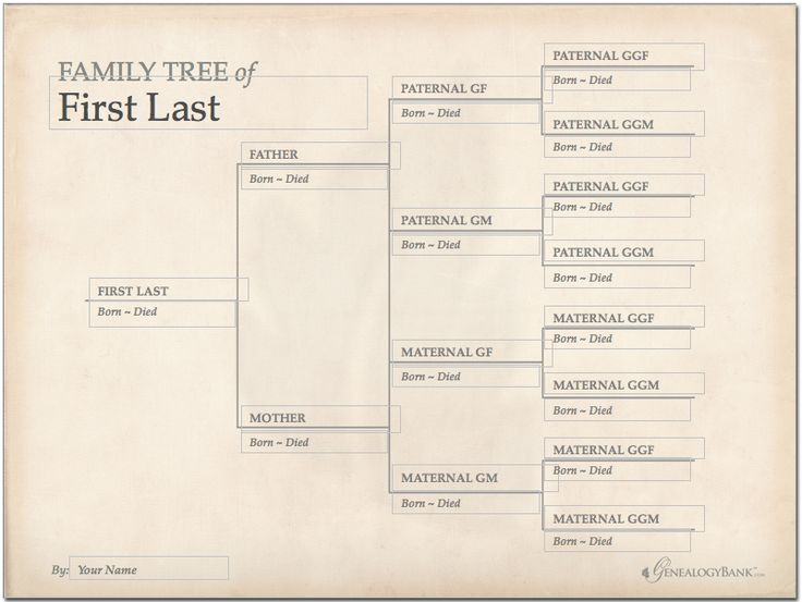 228 best images about genealogy charts forms and for Templates for family tree charts