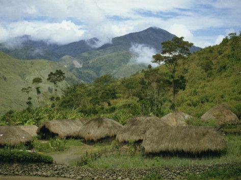 Irian Jaya Forest | Yali Village, Irian Jaya, Indonesia, Southeast Asia Photographic Print