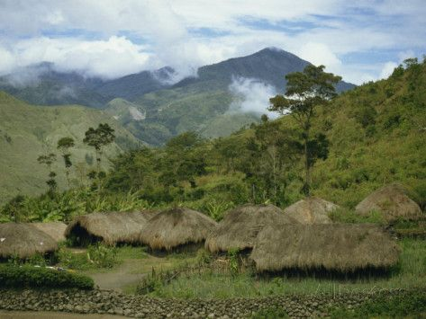 Irian Jaya Forest | Yali Village, Irian Jaya, Indonesia, Southeast Asia Photographic Print