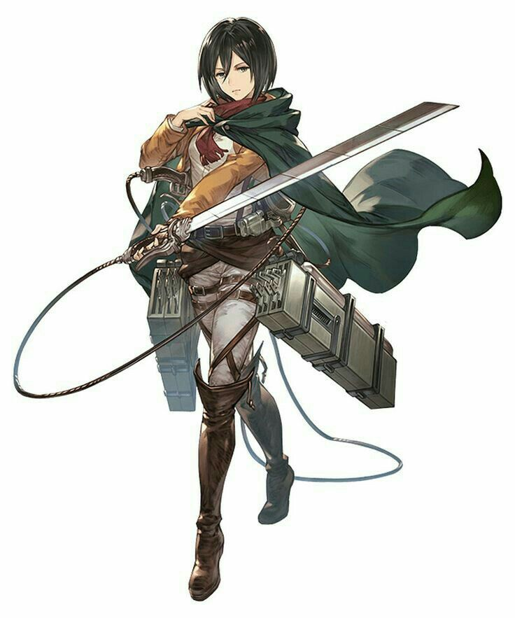 Pin by BIOS on Attack on Titan | Attack on titan anime ...