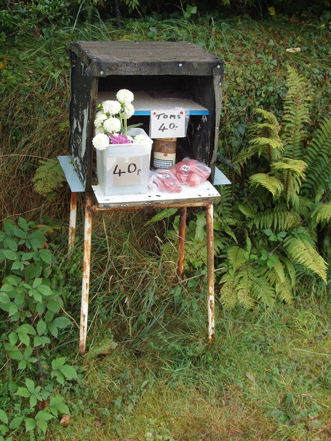 """Google Image Result for http://s0.geograph.org.uk/photos/22/18/221887_d55723c8.jpg Produce stall with honesty box, Trevance Tomatoes and flowers for sale on a stand outside a house in this village - with a jam jar to receive the payment. I saw quite a few similar unattended produce stalls as I drove around the lanes. One at Rosenannon displayed vegetables, """"free or give a donation to Cornwall Air Ambulance""""."""