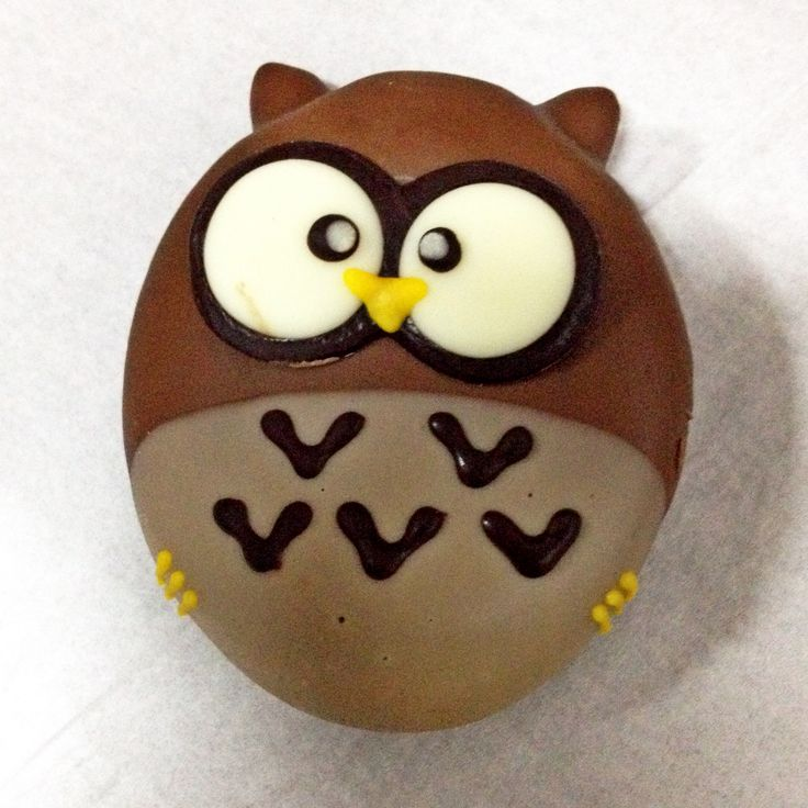Tiny little owl donut