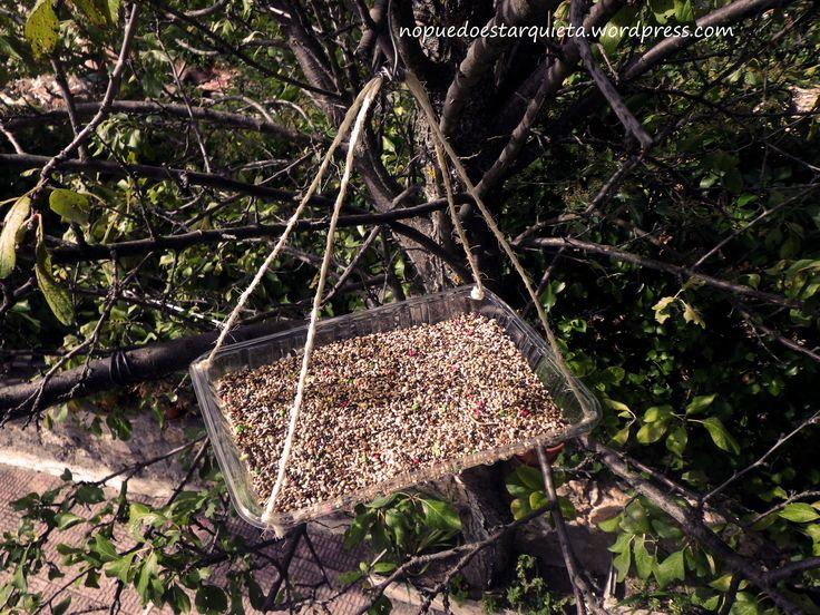 Hacer comederos para aves. Parte I