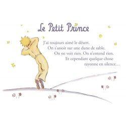 Carte postale Le Petit Prince - J'ai toujours aimé le désert 1