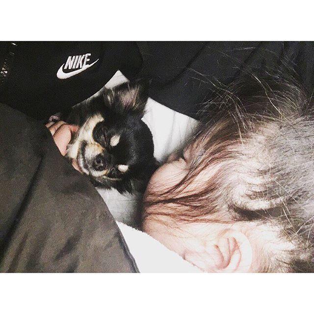 . love love time💘💋💘💋 幸せのひととき。 . かわいいかわいい宝ものの 2人が、あたしの腕の中で 寝んねしてる。😴 . #寝んね#sleep#宝物#baby#女の子#チワワ#愛犬#娘#かわいい#cute#NIKE#nike✔️