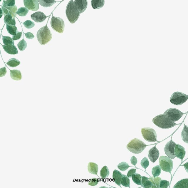 Green Simple Eucalyptus Leaf Border Leaf Eucalyptus Eucalyptus Leaves PNG Transparent Clipart Image and PSD File for Free Download Abstract drawings Leaf border Leaf clipart