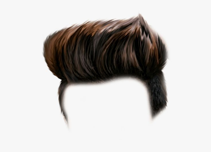 Hairstyle Png Hd In 2020 Photoshop Hair Hair Png Hair Photo