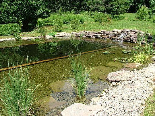 Les 25 meilleures id es de la cat gorie construire une - Construire une piscine naturelle ...