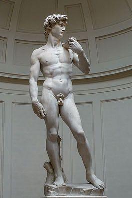 David di Michelangelo - Risposta 1380: un giovane uomo, mentre tiene nella mano destra un sasso e sulla spalla sinistra la fionda, pronto a colpire il gigante