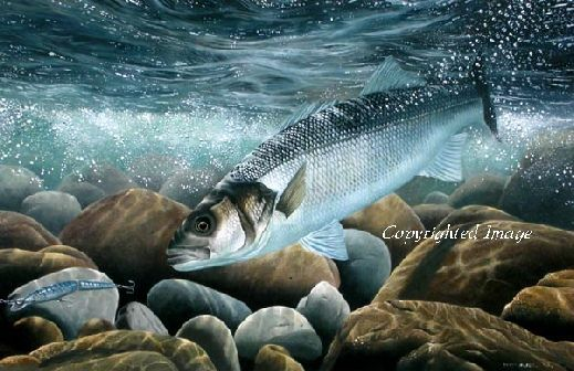 Bass on the Plug by David Miller Limited Edition print £60.00