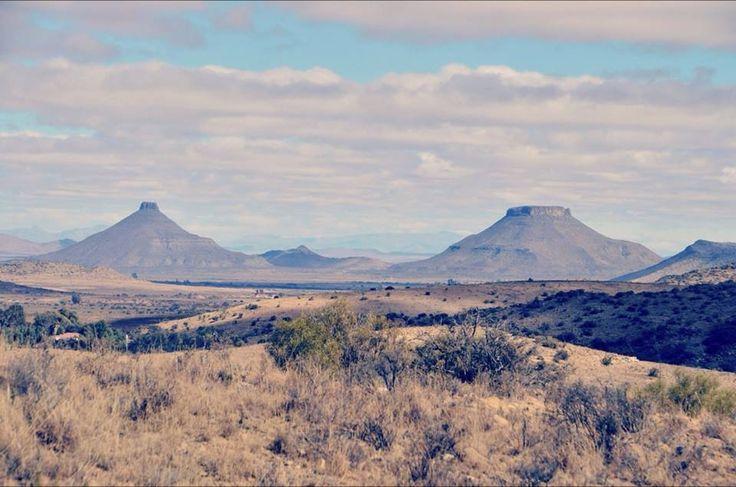 Bravo Farm, Steynsburg Karoo, South Africa.
